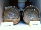 Fossil Marble Bowls