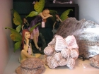 Fairies with Desert Rose